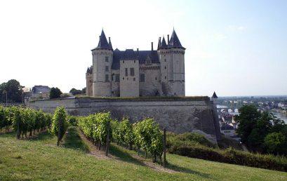 La Valle della Loira e i suoi vigneti